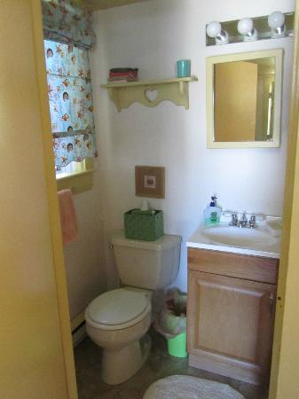 Saltwinds Bed & Breakfast: Our en-suite bathroom (no knob on the door from the inside)