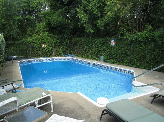 Saltwinds Bed & Breakfast: Inground heated pool with lounge chairs