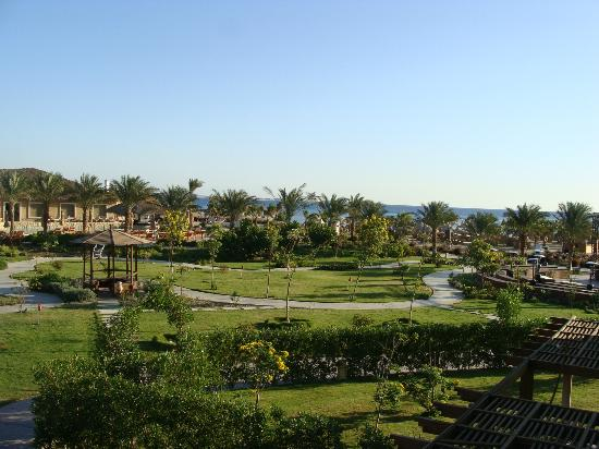 Amwaj Blue Beach Resort & Spa: amwaj blue beach