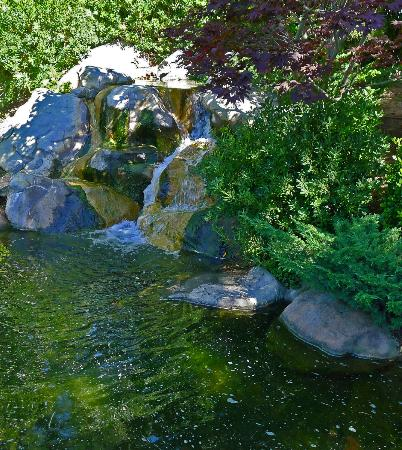 Earl Burns Miller Japanese Garden: Soothing waters here
