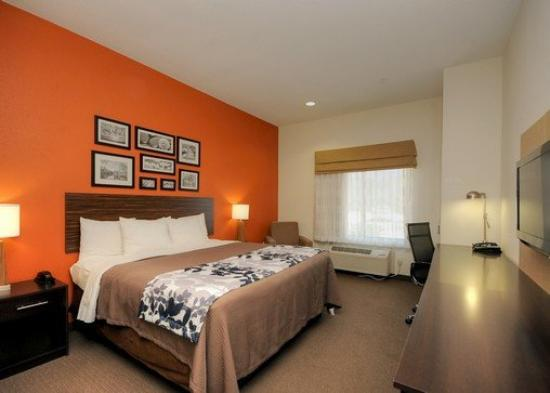 Sleep Inn & Suites I-45 / Airtex: King Room