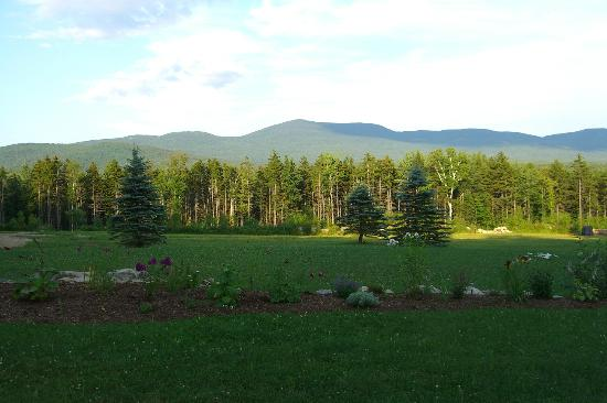Robert Frost Mountain Cabins: Summer view