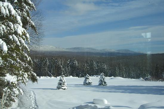 Robert Frost Mountain Cabins: Winter view