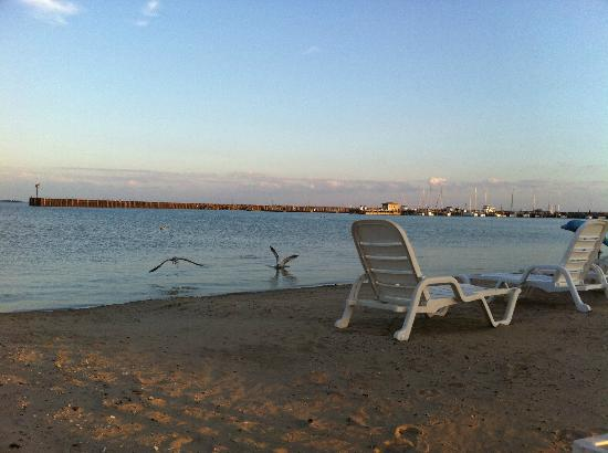 تاواز باي بيتش ريزورت: East Tawas Beach 