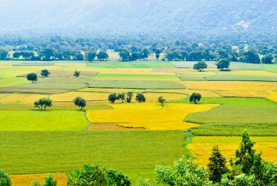 An Giang Province, เวียดนาม: Ta Pa Valley, Tri Ton, An Giang