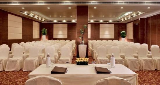 Tulip Inn Gurgaon : Meeting room 2