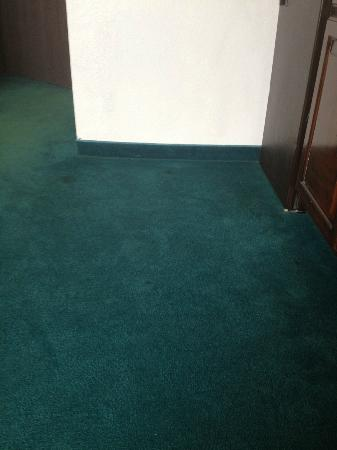 Super 8 Madison/Hanover Area : carpet