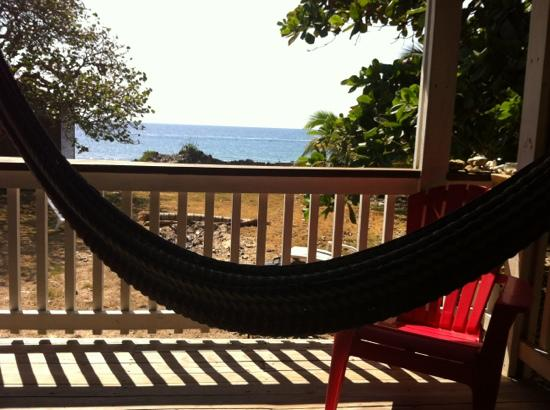 Roatan Vivaro: The view of the iron shore from the cabin