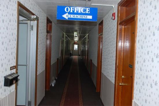 Budget Inn: Interior