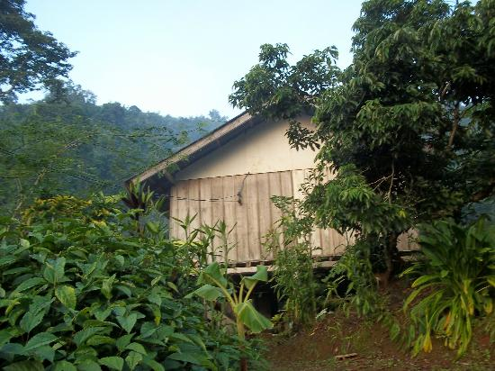 Akha Hill House: room