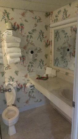 bathroom - Waverly Castle