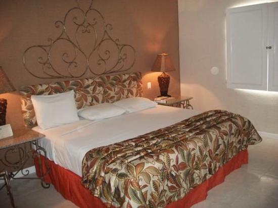 Zar San Luis Potosi : Guest room