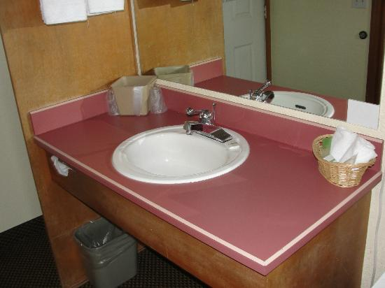 Aladdin Motor Inn: Always nice to have room around the sink to put all my toiletries and cosmetics!