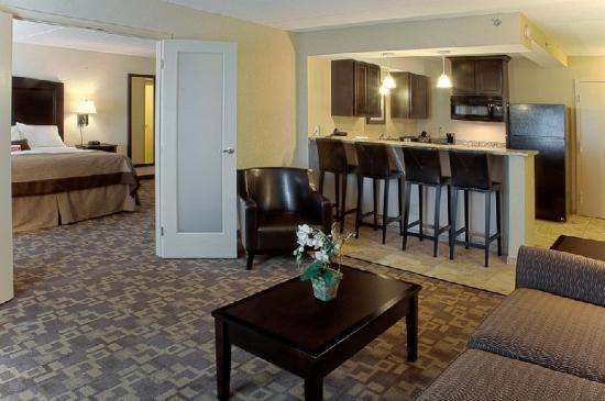 Holiday Inn & Suites Charleston West: Suite