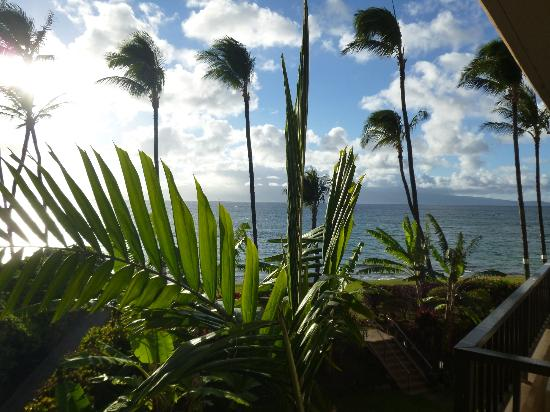 Paki Maui Resort: view from 210 (south rooms)
