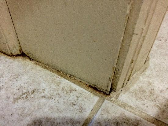 The Suites at Hershey: moldy door trim