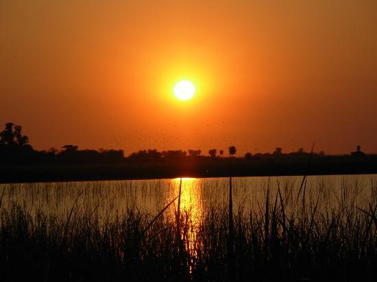 Corrientes, Argentine : amancer