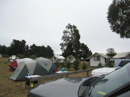Exceptionnel Santa Cruz North / Costanoa KOA: TENTS U0026 CABINS