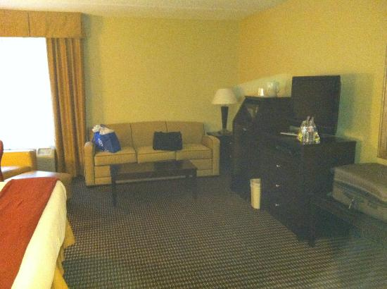 Holiday Inn Express Charleston: room