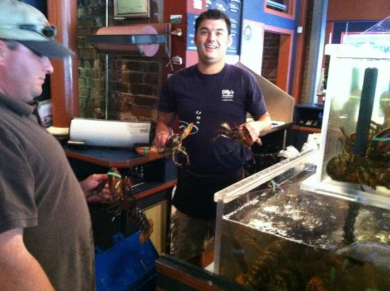 Billy's Seafood Co : restocking the lobster tank