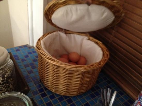 Bed & Breakfast Prins Hendrik: eggs