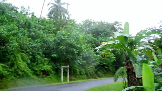 Sao Tome and Principe: Sao Tome Island