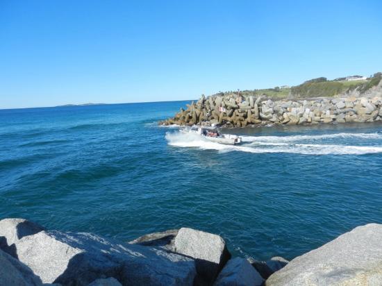 Whale Motor Inn: Taken on a coastal walk
