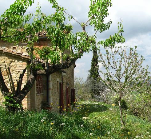 Azienda Agricola Agrimonia: agrimonia, volterra