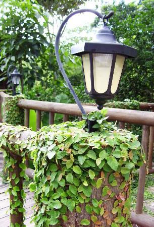 Hotel Selva Verde: Mooie details