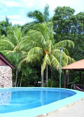 Hotel Selva Verde : Prachtig zwembad