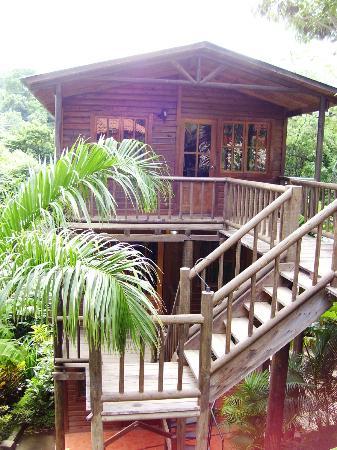 Hotel Selva Verde: Een van de huisjes