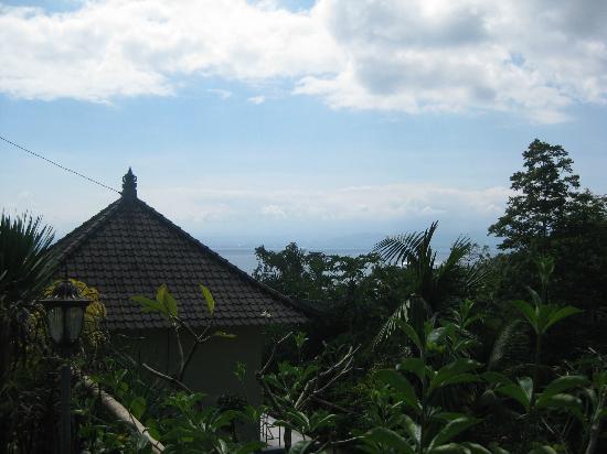 Lembongan Cliff Villas: Room View