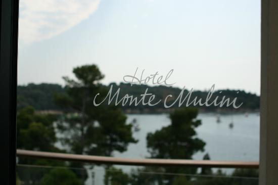 Hotel Monte Mulini: View from the suite