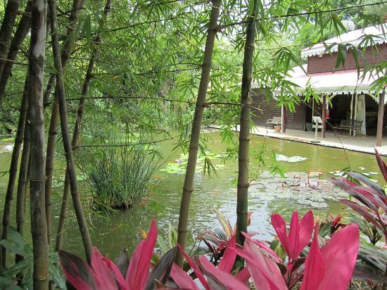 Jardin Botanique de Deshaies: Entrance