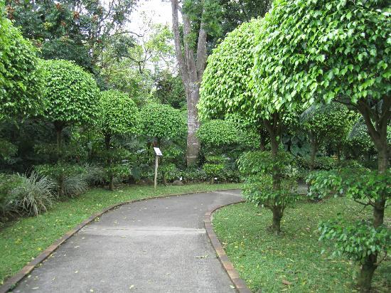 "Jardin Botanique de Deshaies: ""Corridor"" to the restaurant"