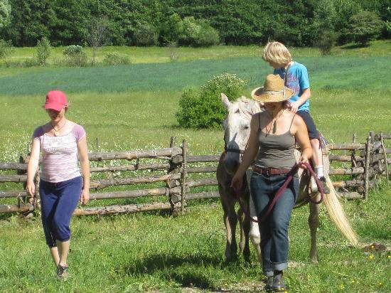 Linden Tree Retreat & Ranch : riding!joy!