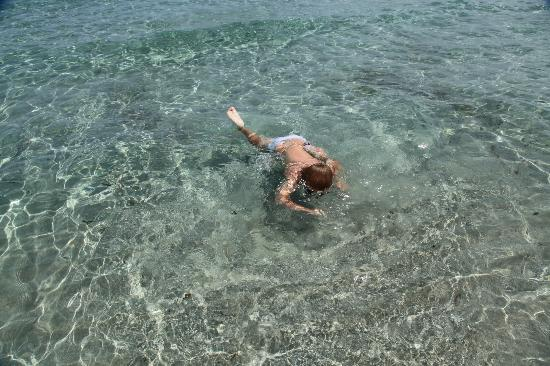 Pullman Timi Ama Sardegna : море, море