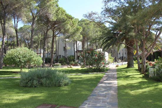Mare Pineta: il giardino dell'Hotel