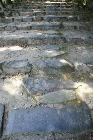 Kamosu Shrine: 石の階段