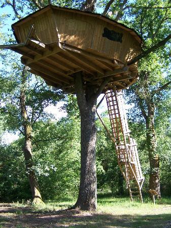 Les Alicourts Resort: Cabane dans les arbres