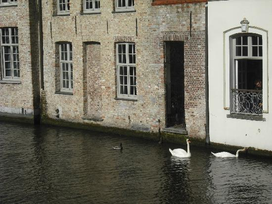 Canalview Hotel Ter Reien: Looking towards our room from the canal