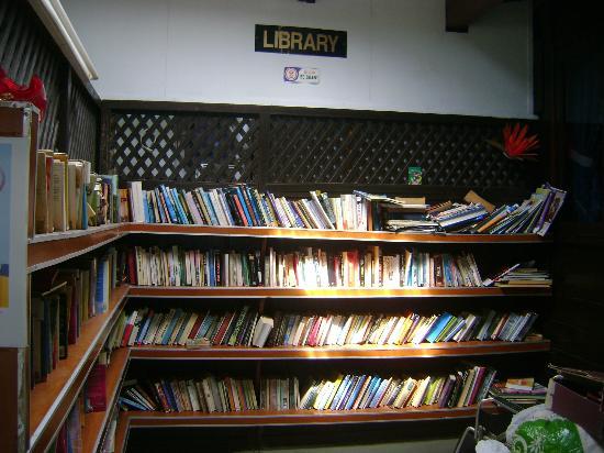 Nipah Bay Villa: Library