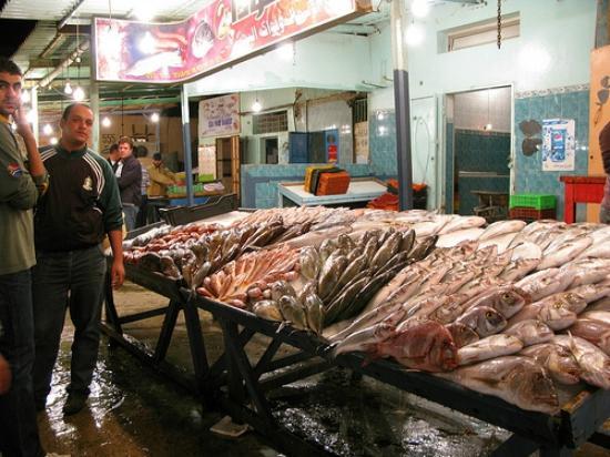 Fish Market Tripoli Libyen Omd Men Tripadvisor