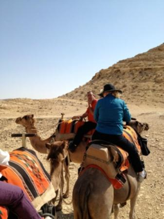 """Negev Camel Ranch: """"If you look over there, you will see the boarder of the Promise Land"""". We were in the Promise L"""