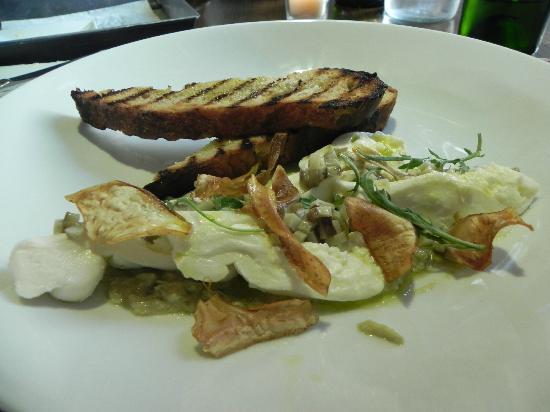 Maison : Mozzarella Burrata