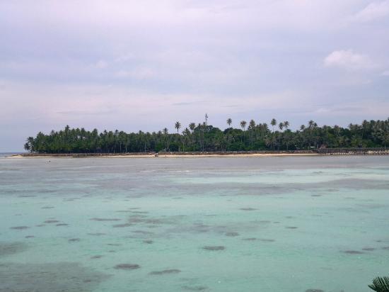 Sipadan Mabul Resort: Mabul Resort seen from the sea 