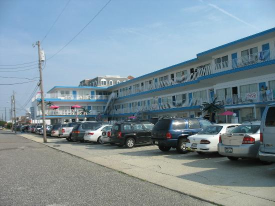 Apollo Resort Motel: Parking area (some spots are double parking)