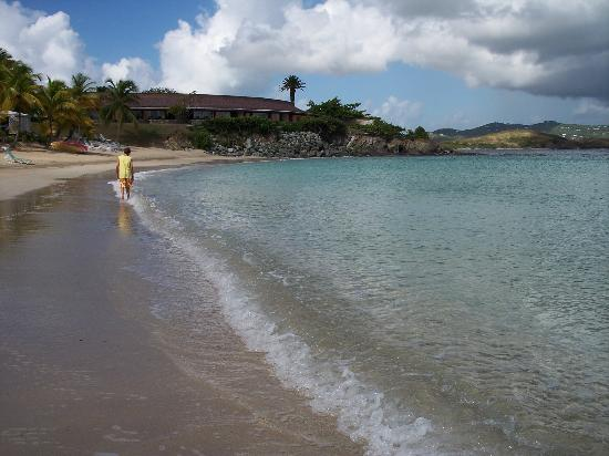 The Buccaneer St Croix: Mermaid Beach