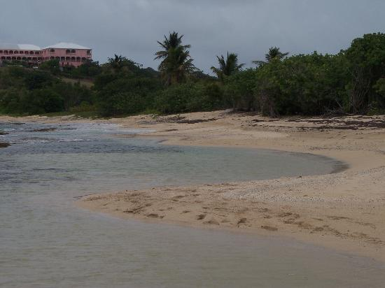 The Buccaneer St Croix : Small Tide Pools