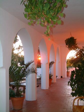 Along Your Hurricane Hotel Terrace at Sunset